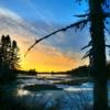Landscape Nature Trees Ice Thaw  - AlainAudet / Pixabay
