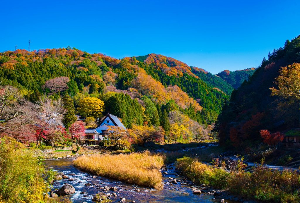 Landscape Valley Japan Nikon  - VictorNakamura / Pixabay