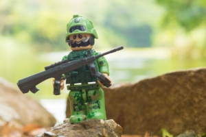 Lego Nature Military Empire  - Willypomares / Pixabay