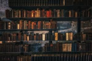 Library Books Bookshelf Vintage  - Tama66 / Pixabay