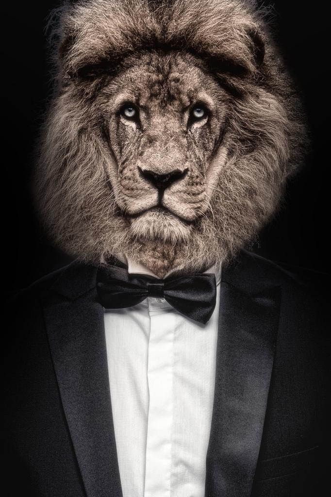 Lion Man Businessman Portrait Suit  - Sammy-Williams / Pixabay