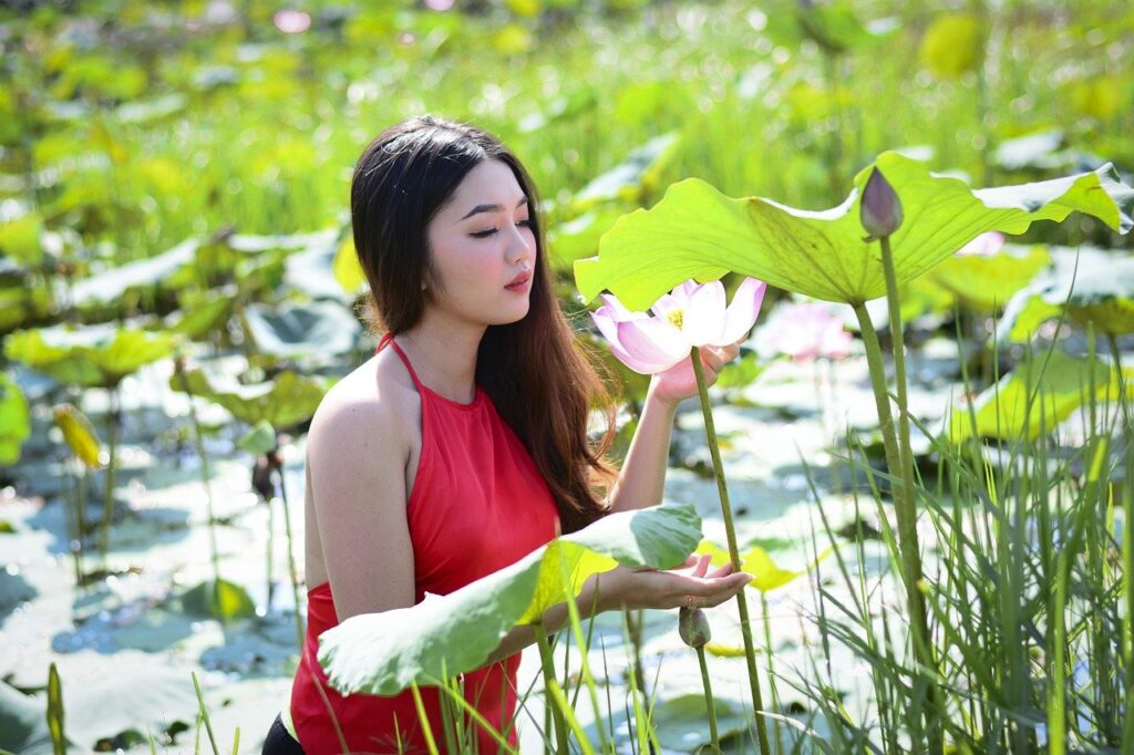 Lotus Yem Woman Fashion Beauty  - NCB19 / Pixabay