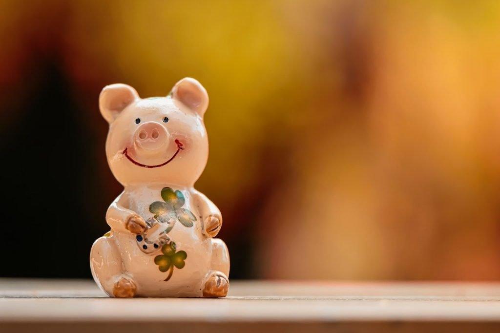 Lucky Pig Luck Lucky Charm Cute  - Alexas_Fotos / Pixabay