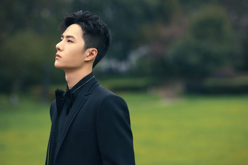 Man Actor Wang Yibo Portrait  - wendy8798516 / Pixabay