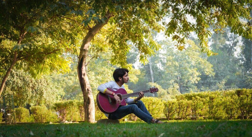Man Guitar Field Playing Guitar  - Stockfoo / Pixabay