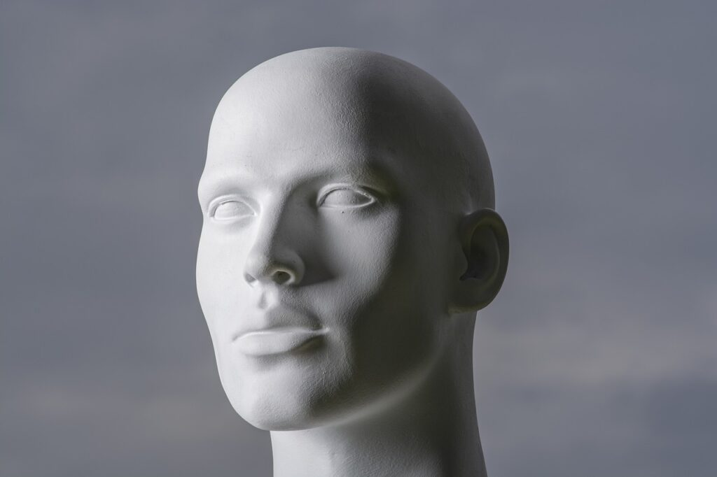 Man Head Face Mannequin Model  - Roentahlenberg / Pixabay