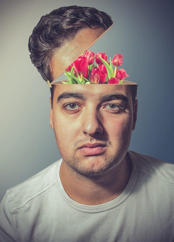 Man Head Tulips Flowers Open Face  - Shutter_Speed / Pixabay