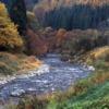 Miyama Stream Autumn River Creek  - toytoy1019 / Pixabay