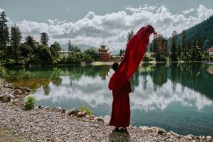 Monk Temple Eminent Monk  - mathgun / Pixabay