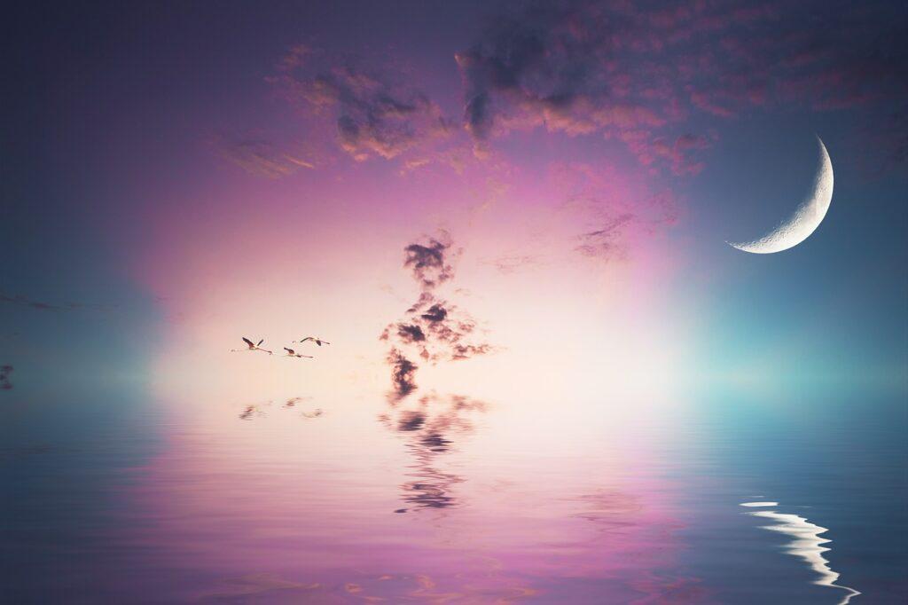 Moon Sea Birds Flying Birds Sky  - enriquelopezgarre / Pixabay