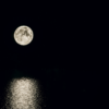 Moon Sky Sea Moonlight Light  - Avia5 / Pixabay