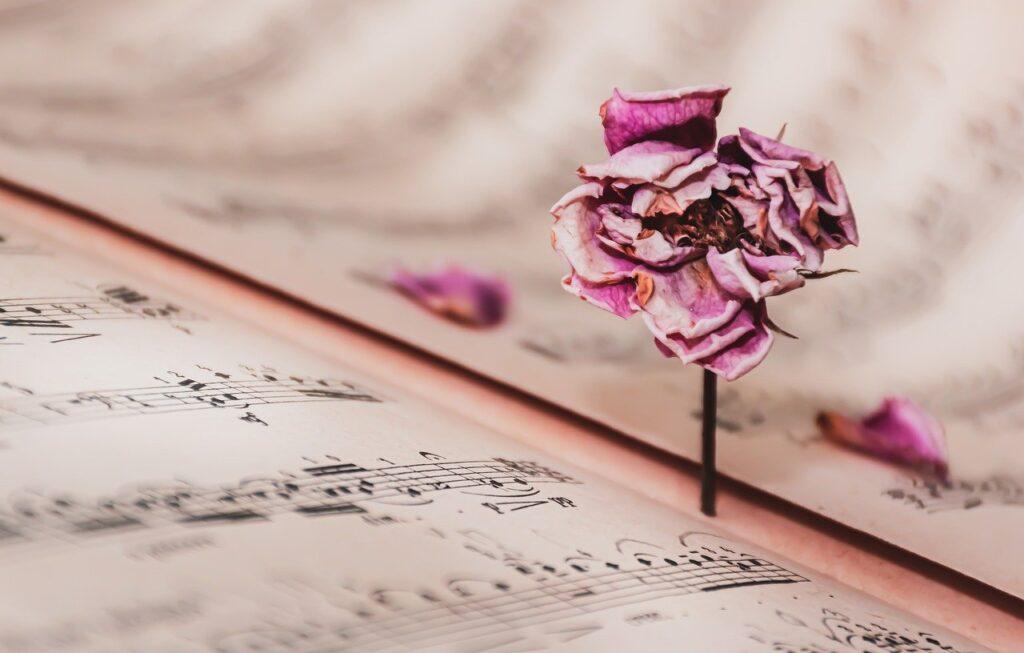Music Sheet Dried Rose Vintage Rose  - Ri_Ya / Pixabay