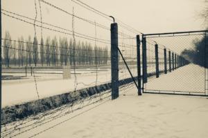 Nazi Concentration Camp Holocaust  - PabloFigueiredo / Pixabay