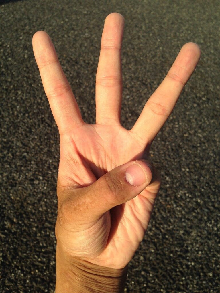 Palm Hand Finger Nail Young  - HNDPTESBC / Pixabay