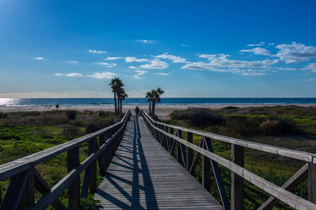 Palms Sea Sun Nature Sky Waves  - angelazeta / Pixabay