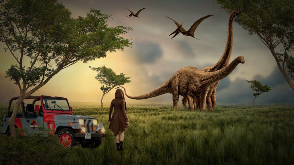 Park Wilderness Landscape Jeep  - Stine86Engel / Pixabay