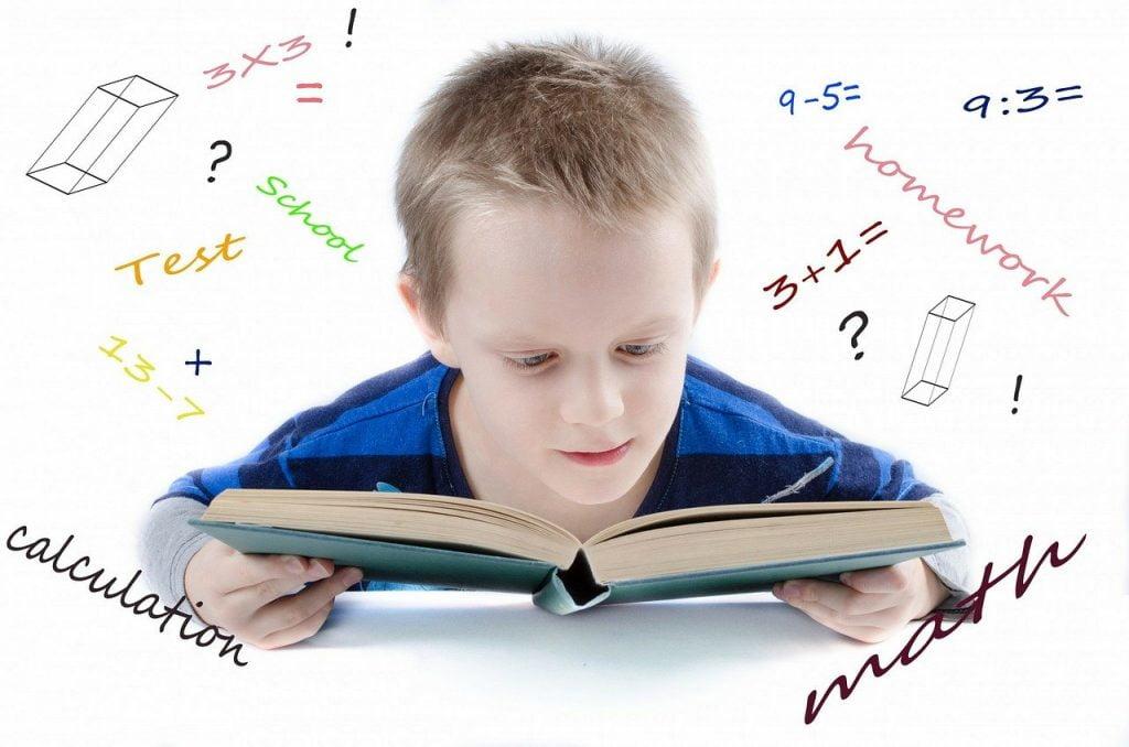People Child School Genius  - PublicDomainPictures / Pixabay