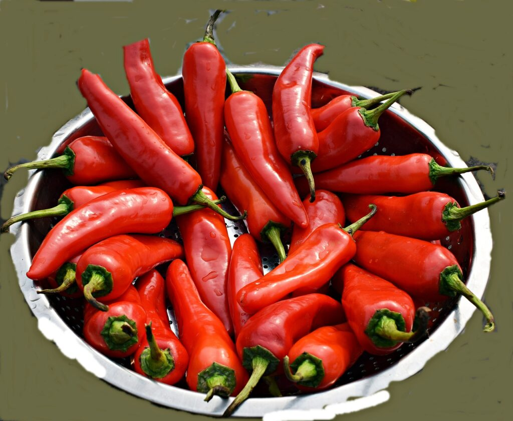 Peppers Food Vegetables Red Chilies  - balouriarajesh / Pixabay