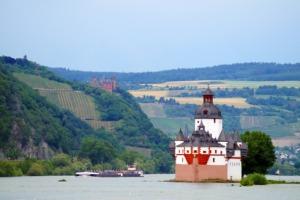 Pfalzgrafenstein Castle Island River  - Bundschatten / Pixabay