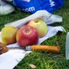 Picnic Apples Food Meal Knife  - jeanlouisservais / Pixabay