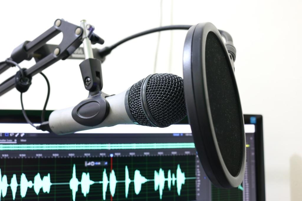 Podcast Audio Recording Microphone  - florantevaldez / Pixabay