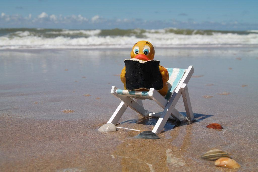 Read Duck Chair Book Water Beach  - Majaranda / Pixabay