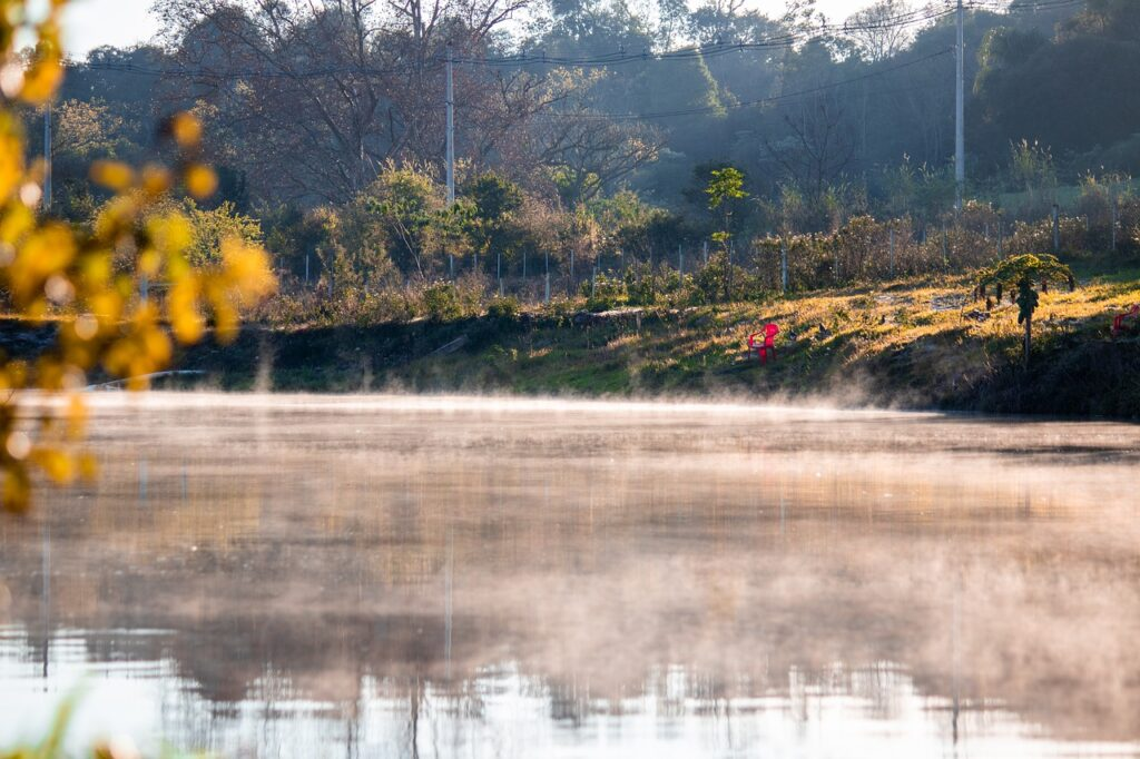 River Fog Bank River Bank  - jonasmsantos / Pixabay