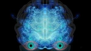 Robot Brain Eyes Futuristic  - ParallelVision / Pixabay