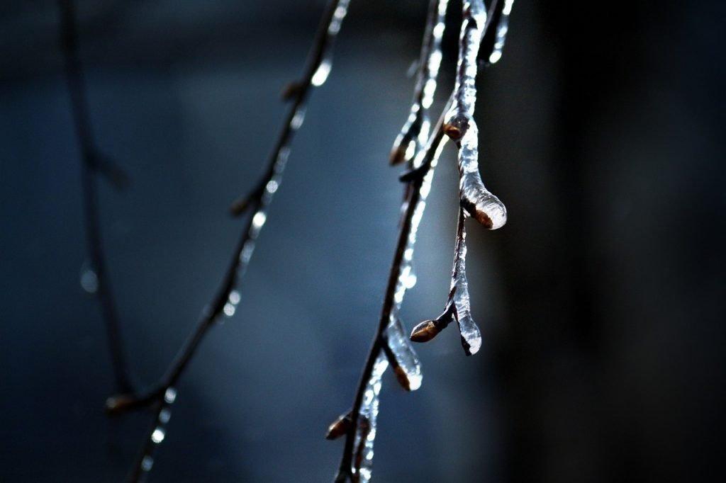 Russia Saratov Winter Cold Berezka  - DenisK_2017 / Pixabay
