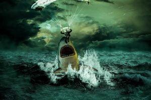 Sea Ocean Shark Water Glider  - horth / Pixabay