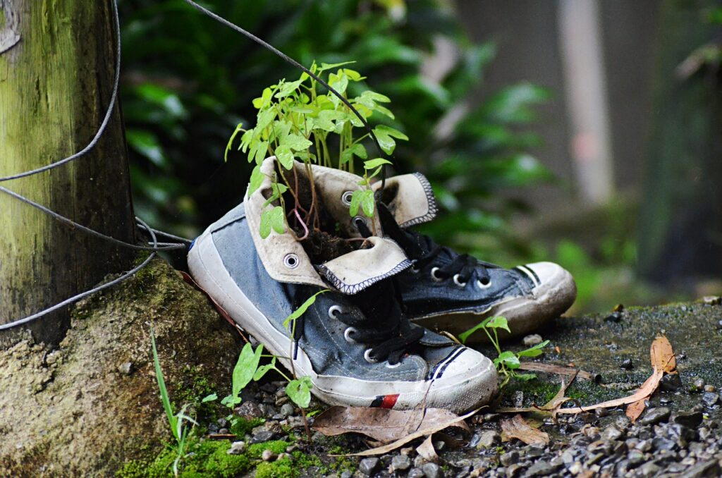 Shoes Aged Nature Plants Slippers  - orzalaga / Pixabay