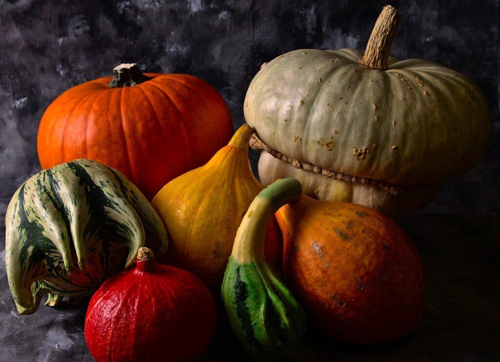 Squash Vegetables Still Life  - lovini / Pixabay