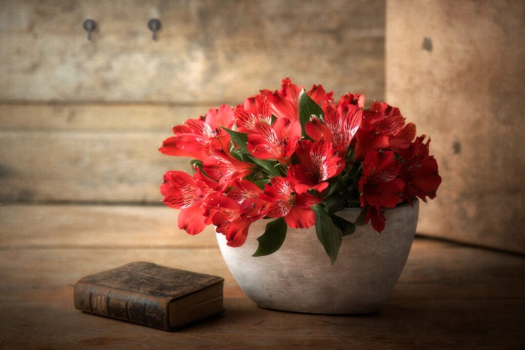 Still Life Flowers Book Pot  - ichhabs / Pixabay
