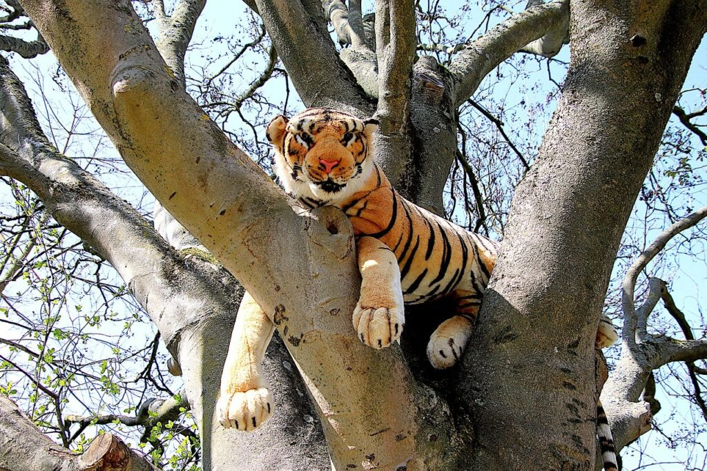 Stuffed Tiger Toy Branches  - GAIMARD / Pixabay
