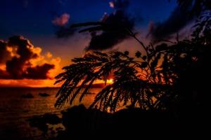 Sunset Sun Sky Evening Cloud  - MSeimori / Pixabay