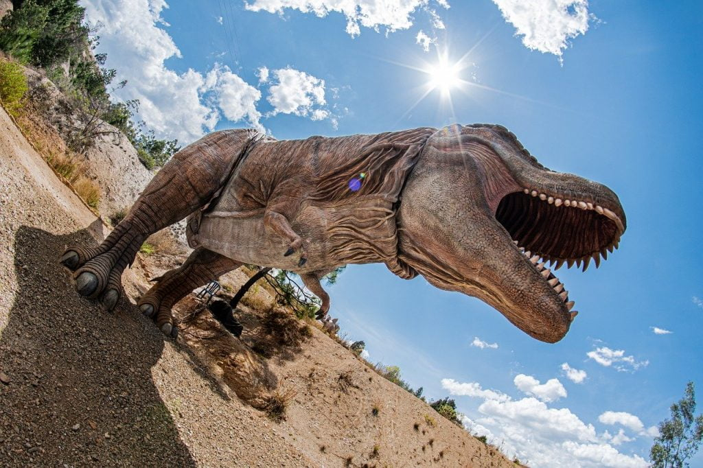 T Rex Tyrannosaurus Gondava Boyaca  - bergslay / Pixabay