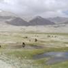 Tajikistan Pamir Mountains  - lolorun / Pixabay