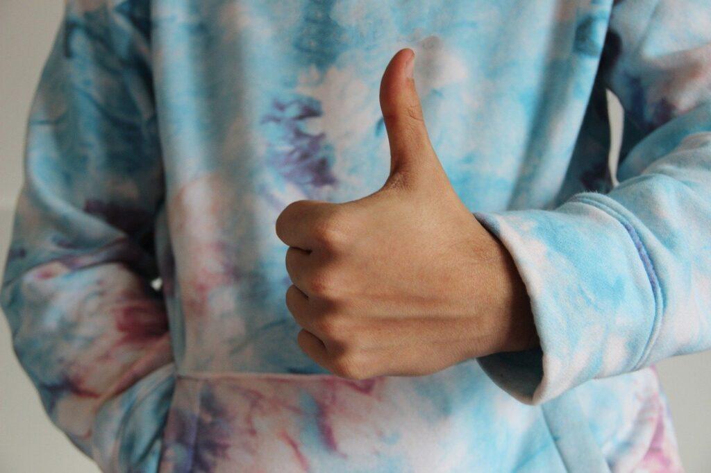 Thumbs Up Like Ok Hand Positive  - Alexandra_Koch / Pixabay