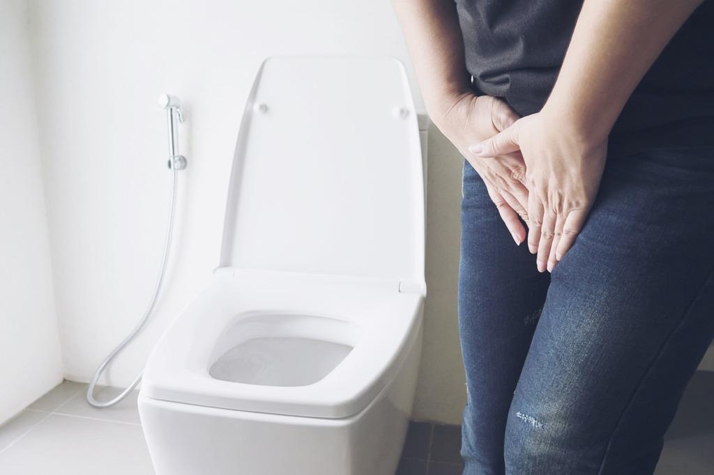 Toilet Pee Person Bathroom  - bzndenis / Pixabay