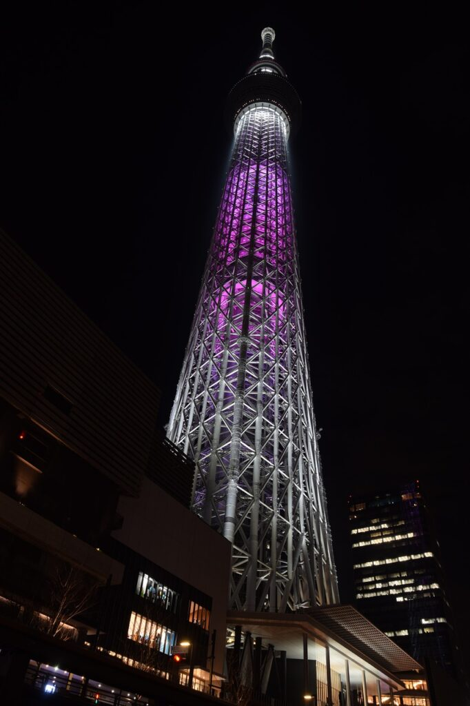 Tokyo Skytree Landmark Japan Night  - LittleMouse / Pixabay