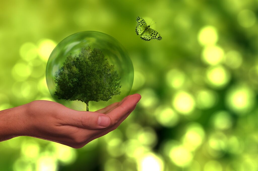 Tree Butterfly Globe Energy  - geralt / Pixabay
