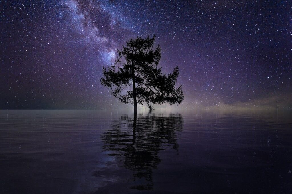 Tree Stars Lake Water Single Tree  - TheDigitalArtist / Pixabay