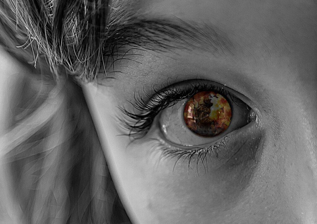 War Refugees Children Help  - Alexas_Fotos / Pixabay