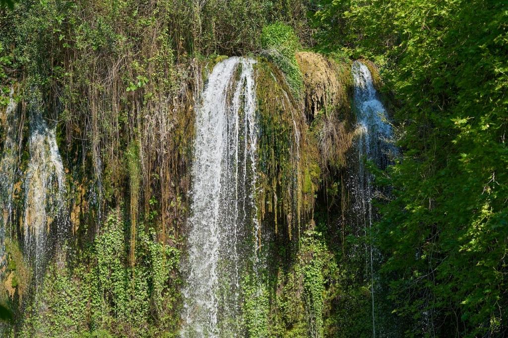Waterfall Water Nature Forest  - Engin_Akyurt / Pixabay