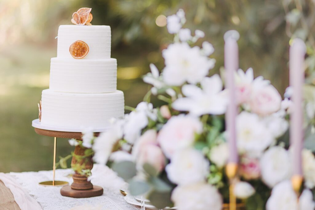 Wedding Cake Cake Party Pastry  - lilyandmoon / Pixabay