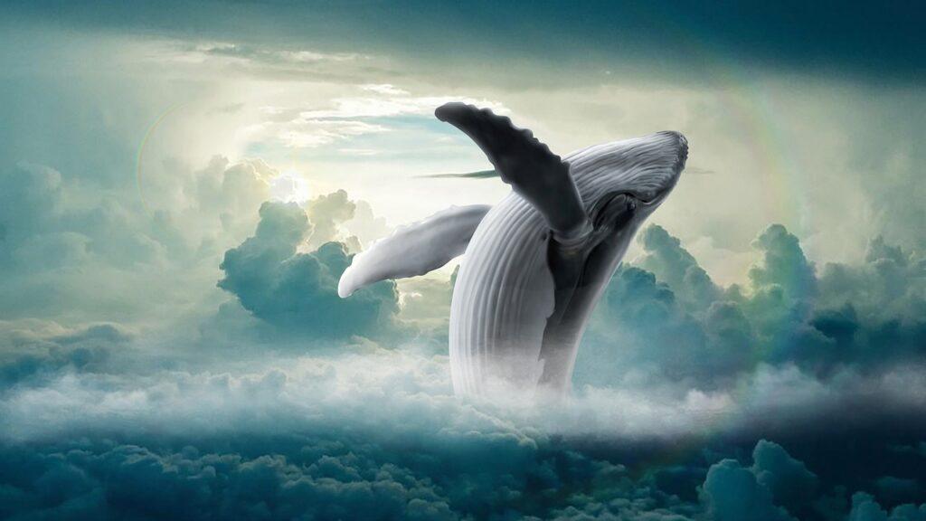 Whale Clouds Fantasy Humpback Whale  - BiancavanDijk / Pixabay