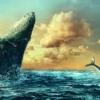 Whales Sea Ocean Clouds Sky Water  - Darkmoon_Art / Pixabay